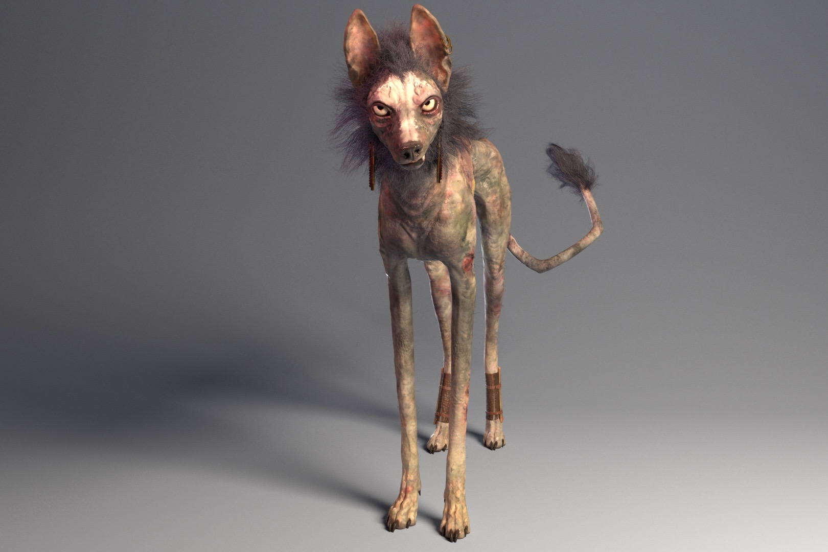 kheelk-graphic-design-the-dog-days