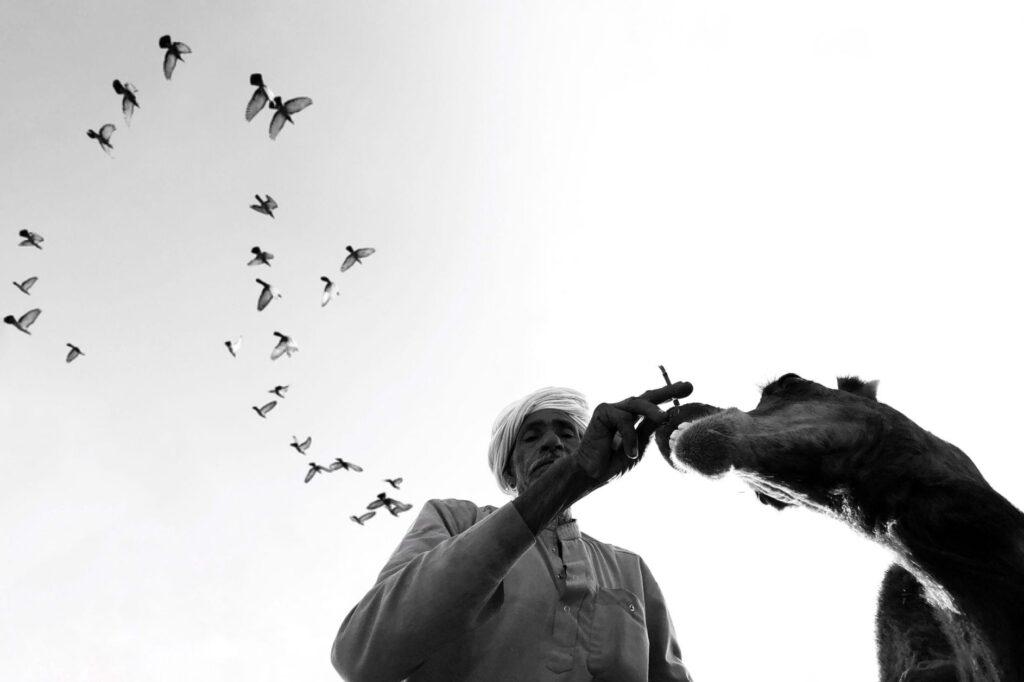 women-street-photographers-collective